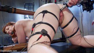 Barbary Rose Serves Mistress Kara
